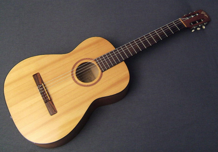 The Unique Guitar Blog: The Goya Rangemaster